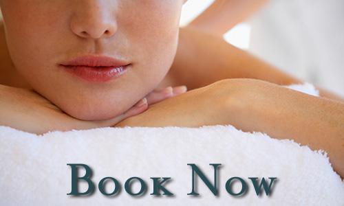 Professional Massage Therapy Book Now
